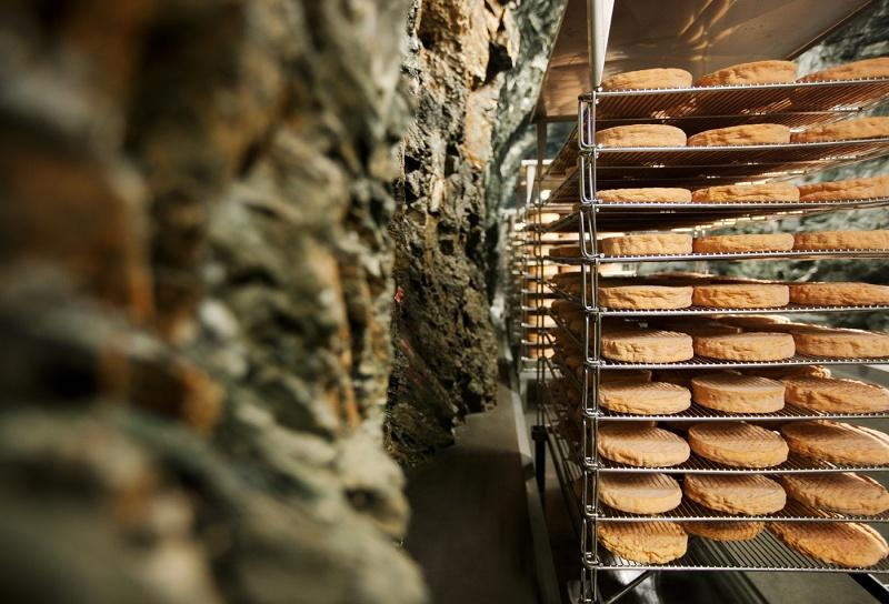Der Käse aus dem Stollen (Foto: Harald Eisenberger)